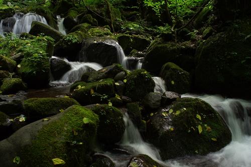 雨滝(鳥取県鳥取市)