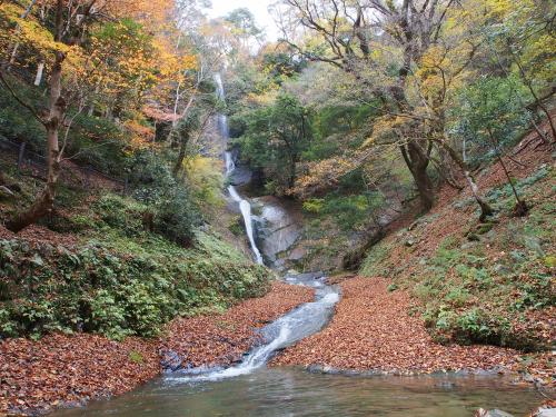 猿尾滝(兵庫県)